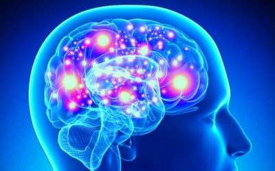 Alzheimer's Disease: Light therapy may protect the brain